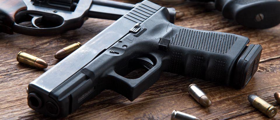 VA gun owners. Kiattipong, Shutterstock.