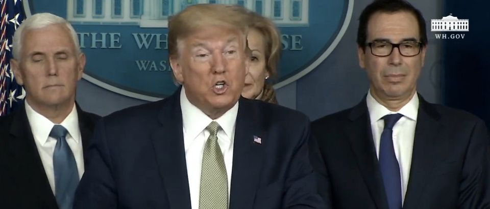 President Donald Trump gives a press briefing on the Coronavirus. (Screenshot/YouTube/ White house)