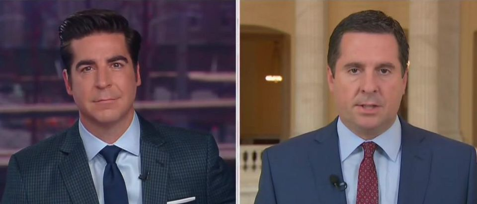 Devin Nunes says left and media are panicking country 'for no reason' (Fox News screengrab)