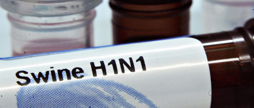 DNA test kits of the the influenza A(H1N