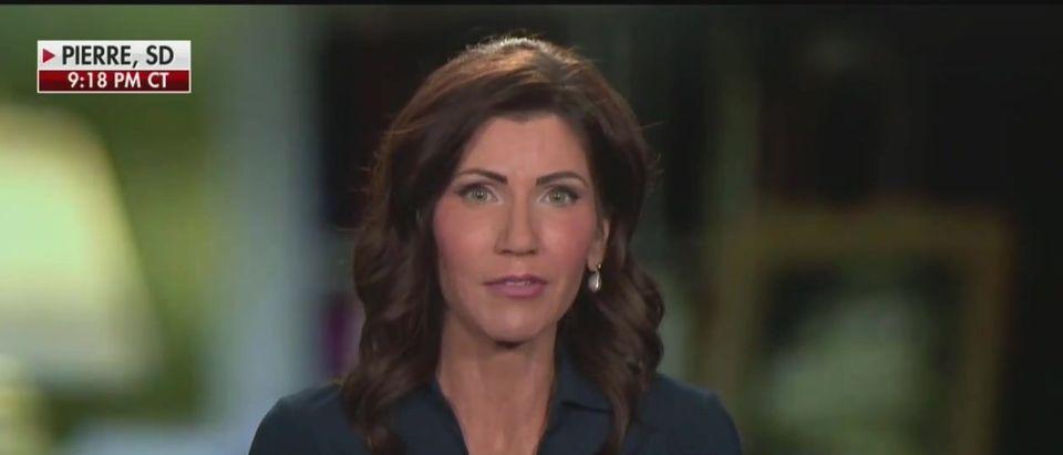 Kristi Noem responds to critics (Fox News screengrab)