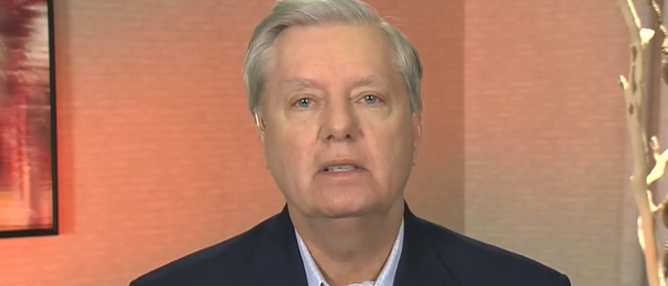 Lindsey Graham blasts Chinese wet markets (Fox News screengrab)