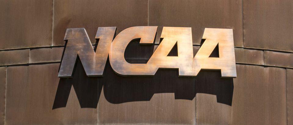 NCAA (Credit: Jonathan Weiss / Shutterstock.com)