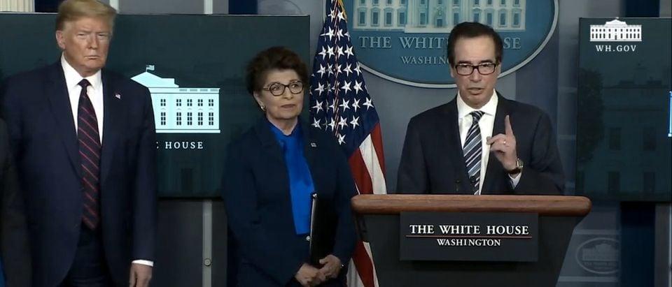 White House press briefing. (SCreenshot/YouTube/White House)