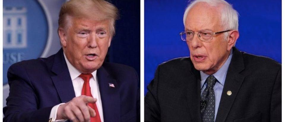 Donald Trump, Bernie Sanders (Getty Images)