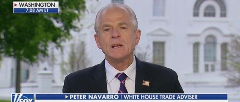Peter Navarro (Fox News)