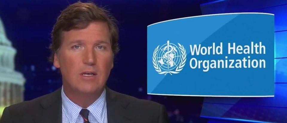 Tucker Carlson blasts WHO (Fox News screengrab)