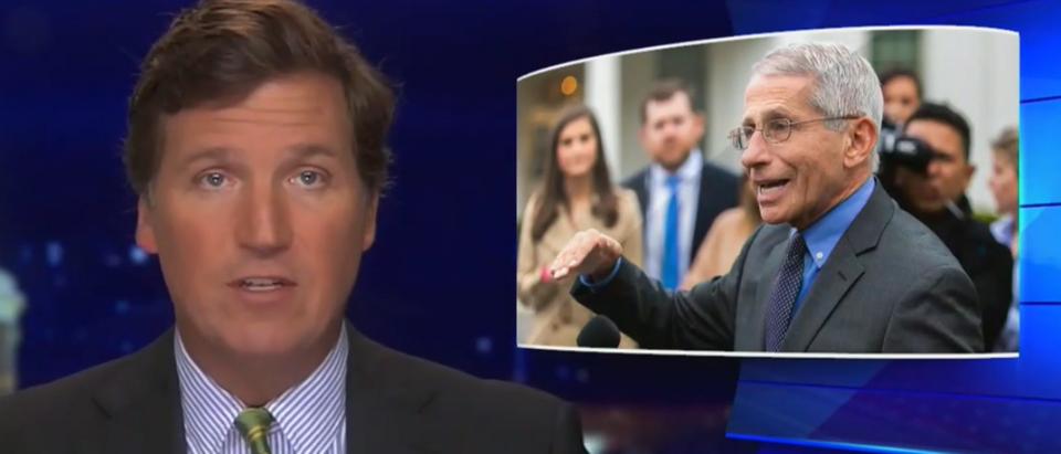 Tucker Carlson questions Dr. Fauci's economic advice (Fox News screengrab)