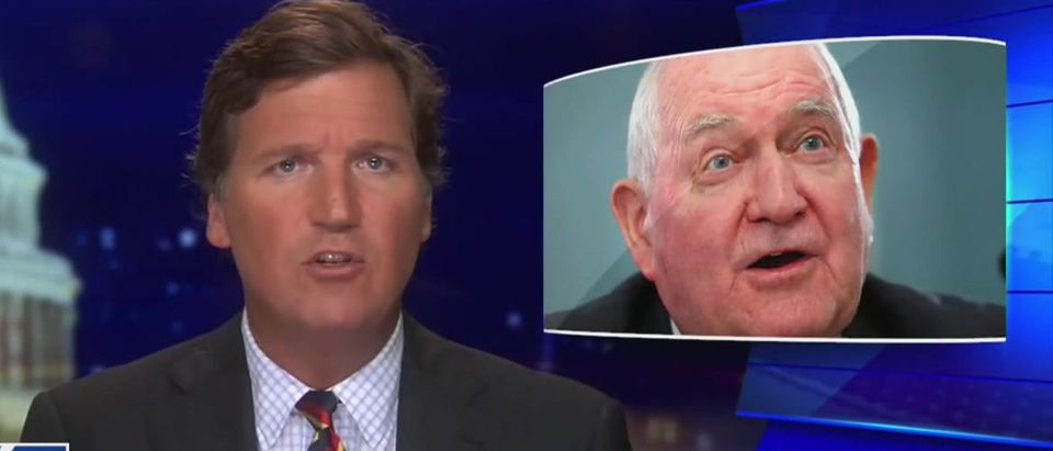Tucker Carlson slams USDA for importing foreign workers during economic crisis (Fox News screengrab)