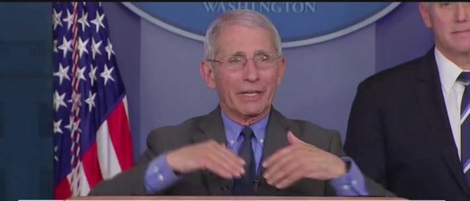 Dr. Anthony Fauci at White House coronavirus task force briefing, April 7, 2020. (Fox News screen capture)