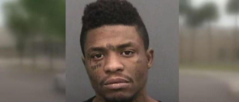 Joseph Edwards Williams, 26, was arrested Monday, April 13, 2020, on second-degree murder charges. He was released on March 19 out of concerns over coronavirus. (YouTube screen capture/WFLA)