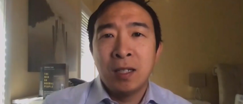 Andrew Yang predicts dire permanent unemployment (CNN screengrab)