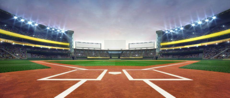 Baseball Stadium (Credit: Shutterstock/Adam Vilimek)
