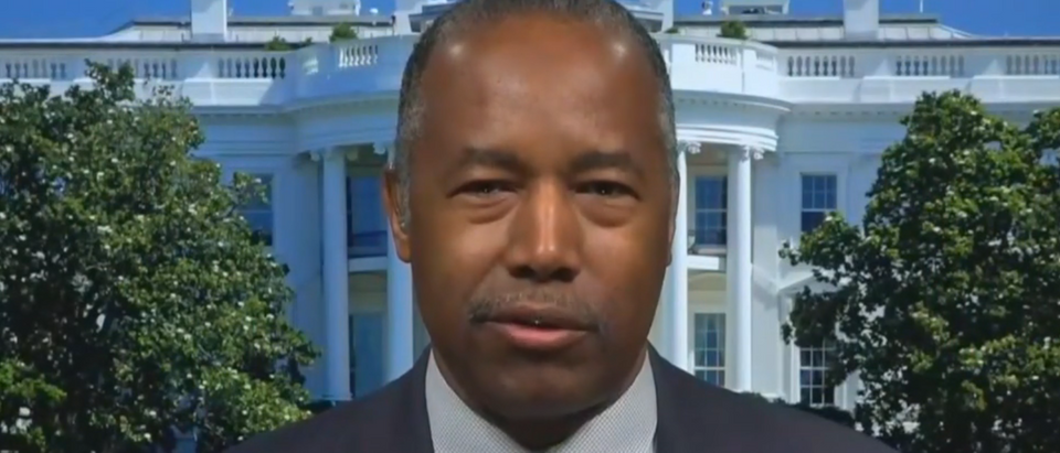 Ben Carson challenges blue states for refusing to ease coronavirus restrictions (Fox News screengrab)
