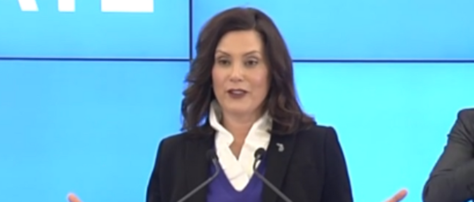 Gretchen Whitmer says she has no proof that protesters are spreading coronavirus (WWTV screengrab)