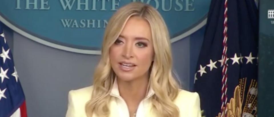 Press secretary Kayleigh McEnany holds White House press briefing. Screenshot/
