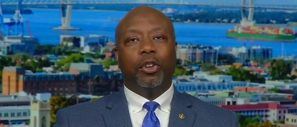 Tim Scott praises Trump record on black issues (Fox News screengrab)