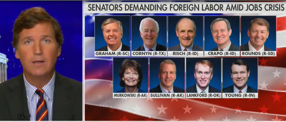 Tucker Carlson calls for GOP senators to be primaried (Fox News screengrab)