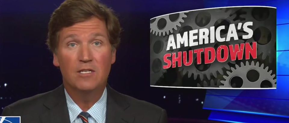 Tucker Carlson cites Georgia, wonders why others aren't learning (Fox News screengrab)
