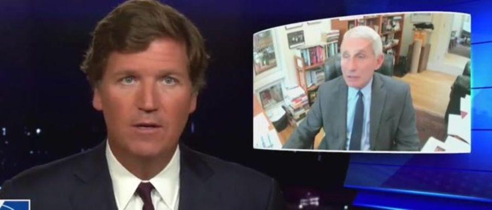 Tucker Carlson questions Dr. Fauci's power (Fox News screengrab)