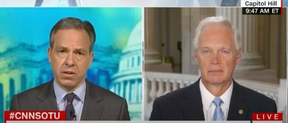 "CNN's Jake Tapper interviewed Sen. Ron Johnson on CNN's ""State of the Union,"" May 17, 2020. (YouTube screen capture/Ron Johnson)"