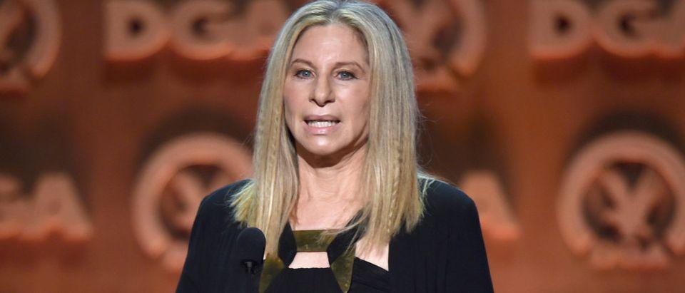67th Annual Directors Guild Of America Awards - Show