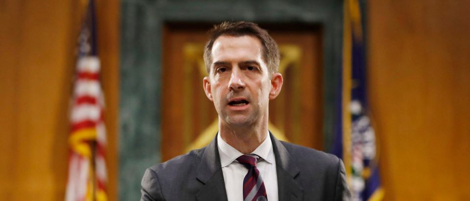 Sen. Tom Cotton, R-Ark., speaks during a Senate Intelligence Committee nomination hearing for Rep. John Ratcliffe, R-Texas, on Capitol Hill in Washington, Tuesday, May. 5, 2020. (Andrew Harnik-Pool/Getty Images)