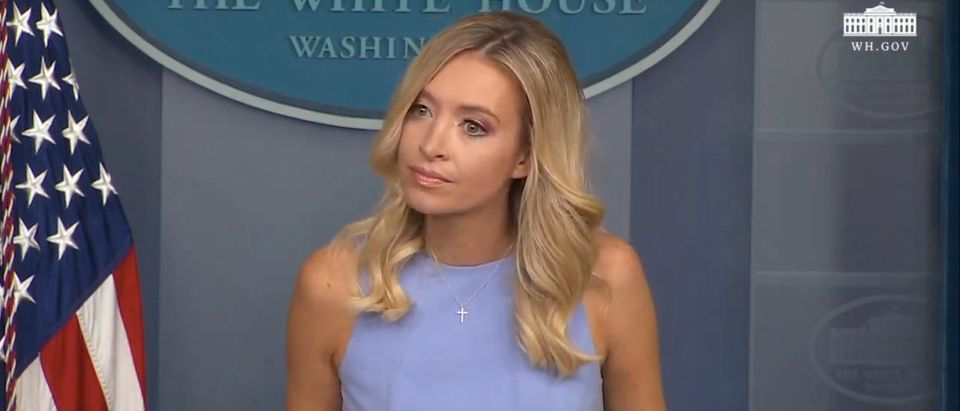 WH Press Secretary Kayleigh McEnany holds a briefing. (Screenshot/YouTube/White House)