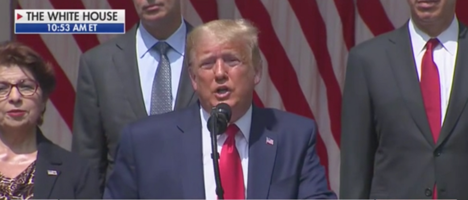 Donald Trump spoke about George Floyd Friday. (Screenshot Fox News Channel)