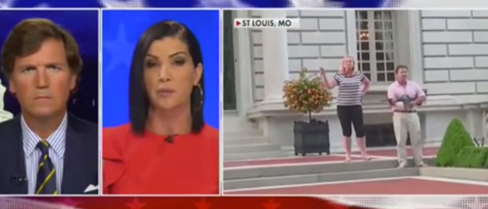"Dana Loesch appears on ""Tucker Carlson Tonight."" Screenshot/Fox News"