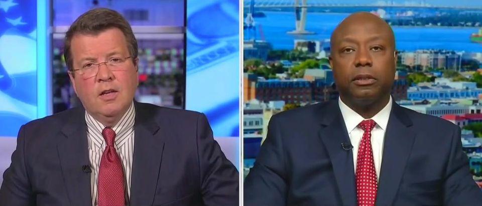 Tim Scott rips CHAZ, defund police efforts (Fox News screengrab)