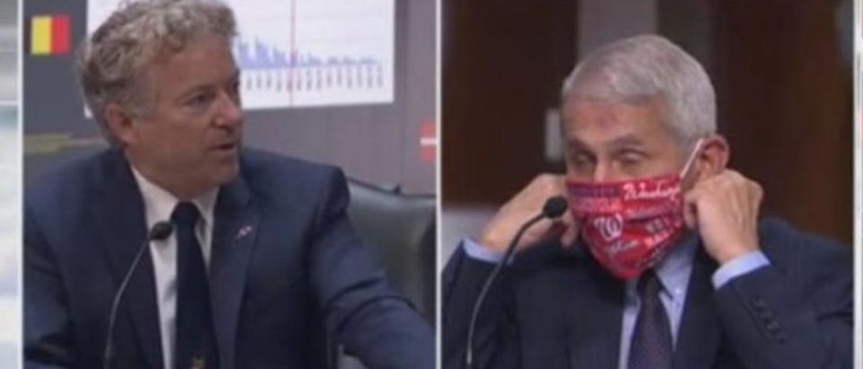 Rand Paul Snaps On Dr. Fauci During Senate Hearing (Fox News/ Screenshot)
