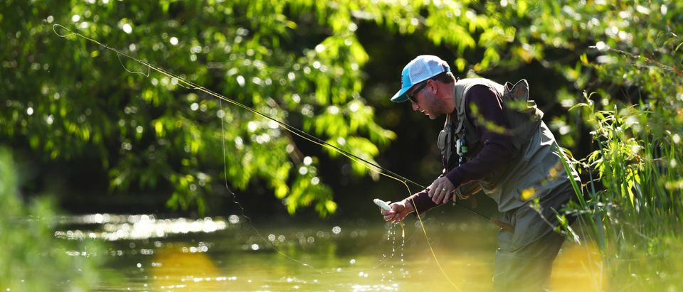Fly fisherman Edward Crownshaw catches a fish on the River Coln following a relaxation of the UK coronavirus lockdown conditions that has enabled fishermen to return to the rivers and lakes across the country on May 27, 2020 in Fairford, United Kingdom. (Photo by Dan Istitene/Getty Images)