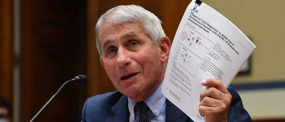 WASHINGTON, DC - JULY 31: Dr. Anthony Fauci, director of the National Institute for Allergy and Infectious Diseases, testifies before a House Subcommittee on the Coronavirus Crisis hearing on July 31, 2020 in Washington, DC. Trump administration officials are set to defend the federal government's response to the coronavirus crisis at the hearing hosted by a House panel calling for a national plan to contain the virus. (Kevin Dietsch-Pool/Getty Images)
