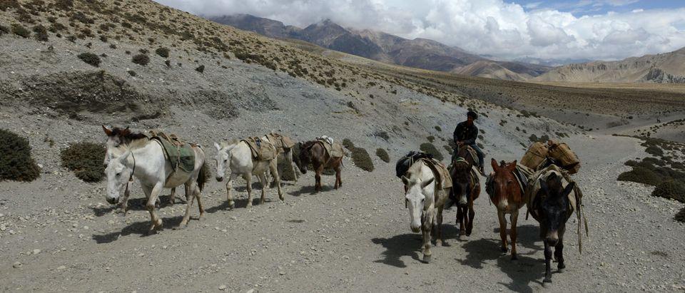 NEPAL-CHINA-INDIA-TIBET-TRADE