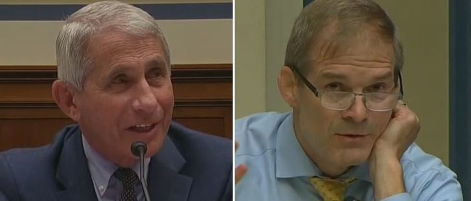 Jim Jordan grills Dr. Fauci on protests (CSPAN2 screengrab)
