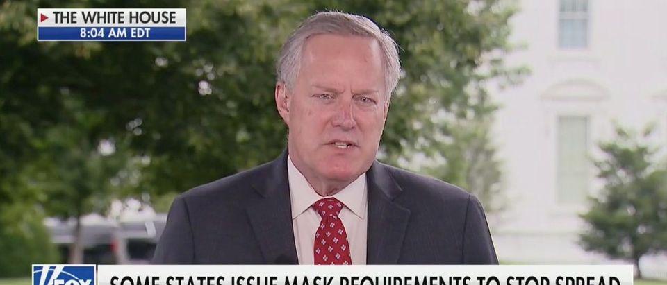 Mark Meadows (Fox News)