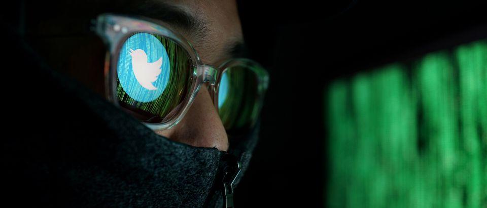 Twitter hacker (Shutterstock, Getty Images, Daily Caller)
