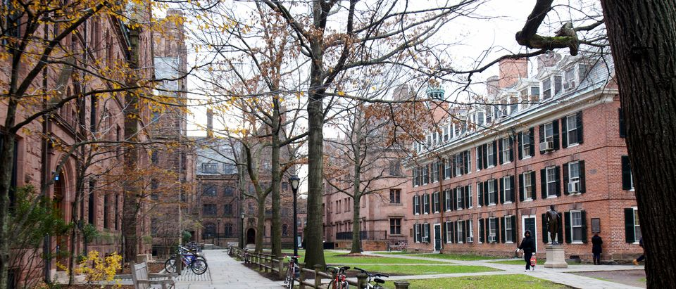 Welch Hall on the Old Campus at Yale University in New Haven