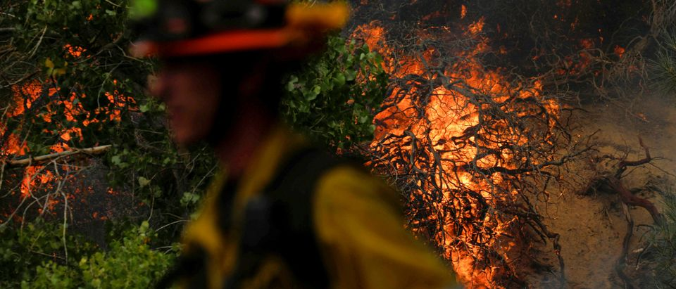 Wildfire burns north of Los Angeles