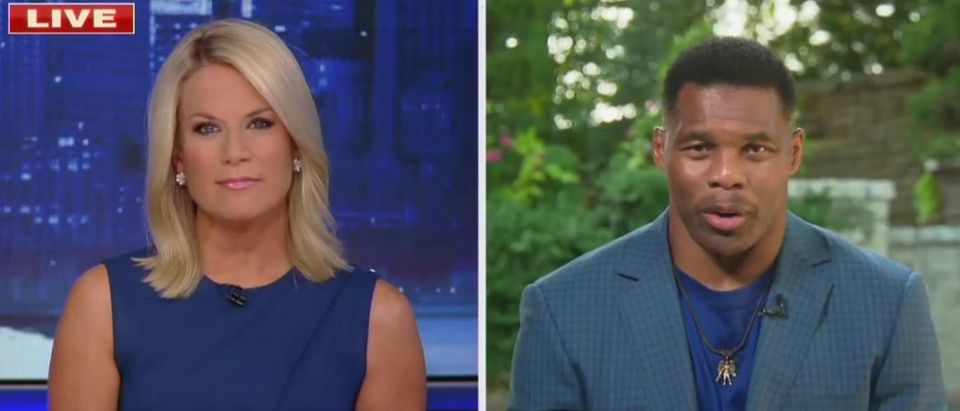 Herschel Walker suggests 'politics' behind football cancellations (Fox News screengrab)