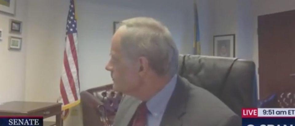 Democratic Delaware Sen. Tom Carper attends a virtual hearing. Screenshot/C-Span