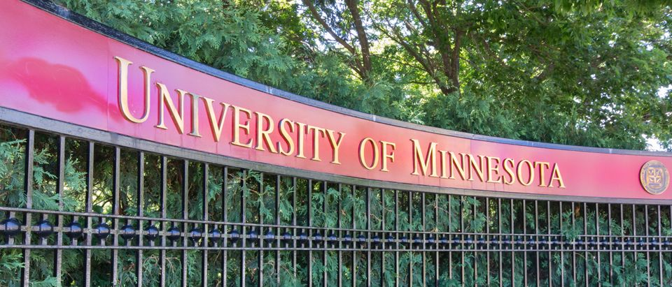 University of Minnesota (Ken Wolter/Shutterstock)