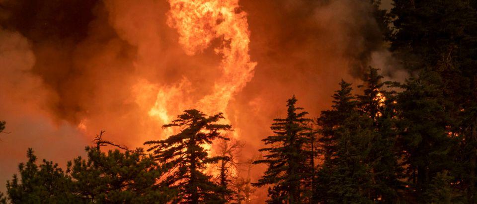 Bobcat Fire Burns East Of Los Angeles
