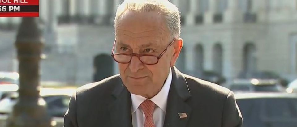 Chuck Schumer interrupted by hecklers (MSNBC screengrab)