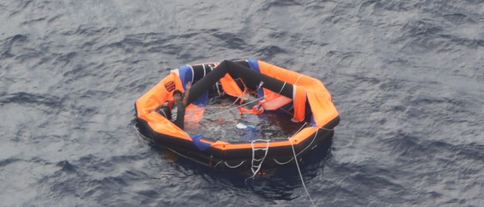 Search Continues For Crew As Cattle Ship Reported Missing Off Coast Of Japan