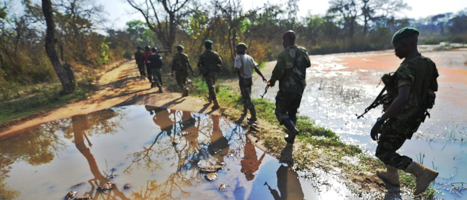 DRCONGO-POACHING-GARAMBA