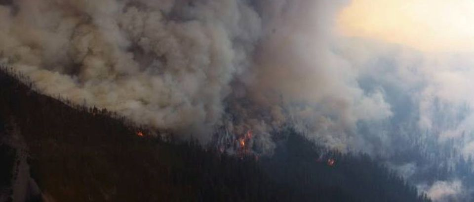 U.S. Forest Service photo of wildfire in Willamette National Forest