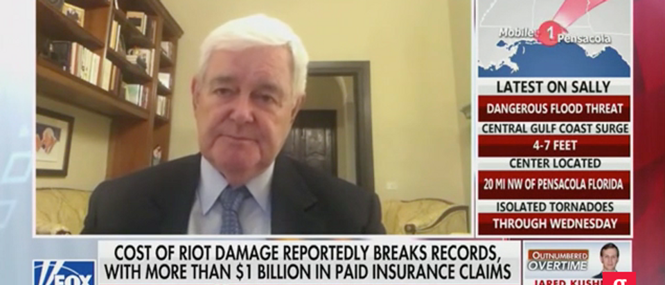Newt Gingrich On Fox News' Outnumbered Wednesday