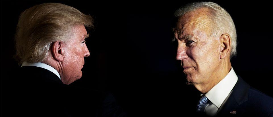 Donald Trump, Joe Biden (Getty Images, Daily Caller)